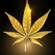 Marijuana Live Wallpaper FREE