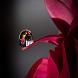 Rain drop LWP by Shrinivas Zilli