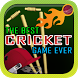 The Best Cricket Game Ever by Sportspunter.com - Best Cricket Game