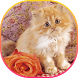 Cute Cat Themes by Christina_Liang