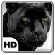Black Cheetah Live Wallpaper by Keyboard and HD Live Wallpapers