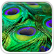 Peacock Feather Live Wallpaper by Live Wallpaper HQ