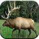 Elk Hunting Calls by Best Ringtones For Everyone