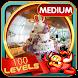 Challenge #148 Wedding Hall New Hidden Object Game by PlayHOG