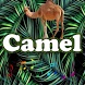 Best Camel Sounds by MarcosMusic