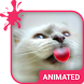 Cat Love Animated Keyboard by Wave Design Studio