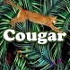 Best Cougar Sounds by MarcosMusic