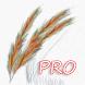 ART Painter PRO by ETMX Software