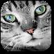Gray Cool Kitty Keyboard by Keyboard Theme Factory