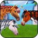 Horse Caring Mane Tressage by bweb media