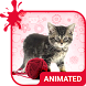 Pretty Cat Animated Keyboard by Wave Design Studio
