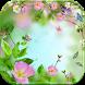 Blossom flower Theme by Wonderful DIY Studio