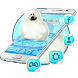 Aquarium Sea Seals Theme by Luxury Mobile Themes