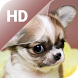 Cute Puppy Live Wallpaper HD by Photo APP