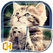 Cats - Tile Puzzles by CHPUZZ