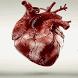 Alive Heart Live Wallpaper by Daksh Apps