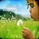 Amazing Wallpaper HD by Sai Developer