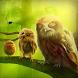 Owls Forest Live Wallpaper by Kajemyaka