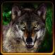 Sniper shooting Jungle Wolf by Viralgamestudios