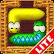 Snake Slider Lite by BdR Games