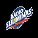 Rádio Sul Minas by Host Rio Preto Informática