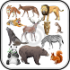 Animal Sound for Kids by Appex Zone