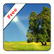 True Weather LWP Free by Vivoti Ltd.