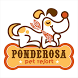 Ponderosa Pet Resort by Katherine Fletcher