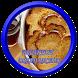 Breakfast Bread Recipes by sankaapps