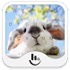 Cute Bunny Keyboard Theme by TouchPal HK