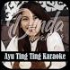 Karaoke Ayu Ting Ting Full + Liriik by dindadev