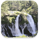 Waterfall Live Wallpaper by Tyron