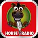 Horse Radio by Fluidstream