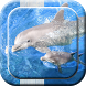Dolphin Live Wallpapers by ????BraVuvi Apps????