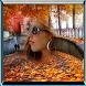 Photo Frame Edit Art by Studio Photo Apps