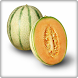 Cantaloupe Fruits Onet Game by Android Fruits Onet Game