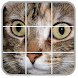 Cats Puzzles by Aragon-Soft