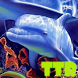 Free Dolphin live wallpaper by TTR