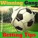 Winning Gang Betting Tips by Aslan Developer