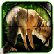 Fox Hunter 2017 by Best shooting games 2018
