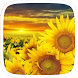 Sunflower Theme by Featuredtheme