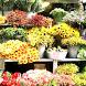 Цветочный магазин by FashionyStudioPro
