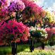 Цветочный сад by FashionyStudioPro