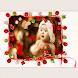 Christmas Photo Montage by Rabia Riaz
