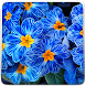 Flowers Live Wallpaper by Art LWP