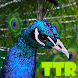 peacock live wallpapers by TTR