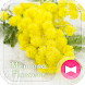 Cute Theme-Mimosa Flowers- by +HOME by Ateam