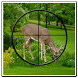 Deer Hunting Sniper Shooter 3D by Hunting & Shooting Games