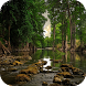 River Wallpapers by Dabster Software