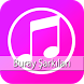 Buray En İyİ Şarkıları by BDG STDO